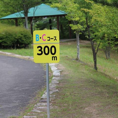 北公園散歩コース