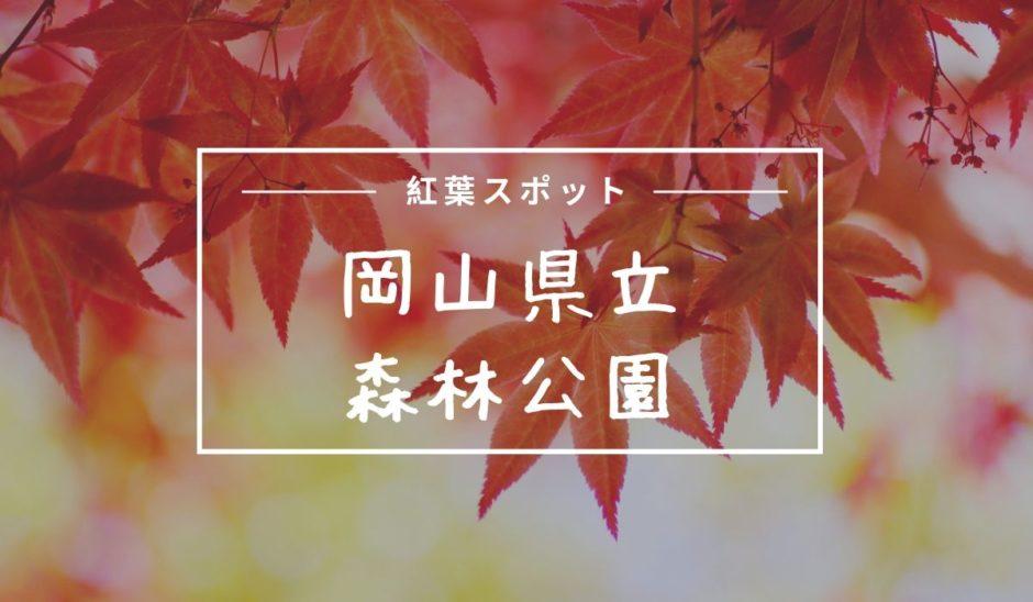 岡山県立森林公園紅葉