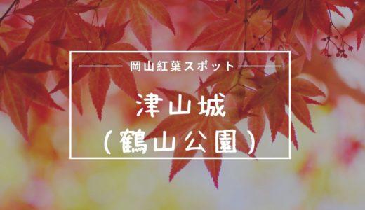 津山城(鶴山公園)の紅葉見ごろ時期はいつ?入場料や駐車場口コミまとめ