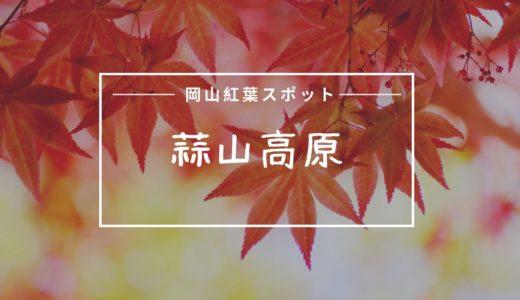 蒜山高原の紅葉の見頃はいつ?おすすめポイントや口コミまとめ