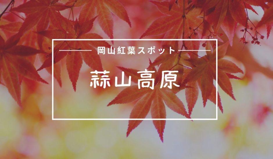 蒜山高原紅葉
