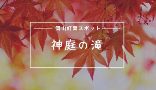 神庭の滝(かんばのたき)自然公園の紅葉見頃時期は?猿に出会える癒し系スポット