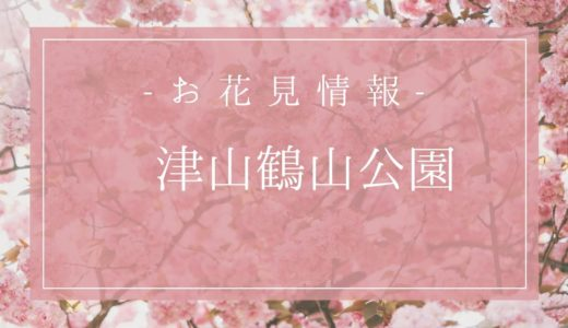 鶴山公園の桜の開花予想は3月27日?駐車場や入場料もまとめるよ!