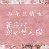 がいせん桜花見