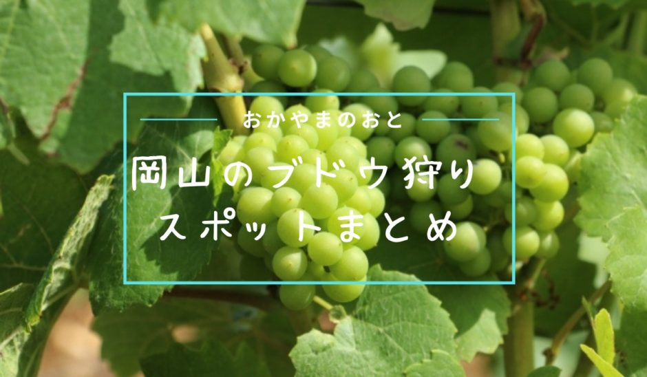 岡山ブドウ狩り